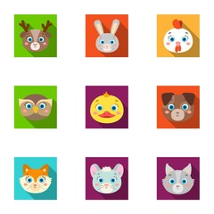Wild and domestic animals. A set of pictures about animals. Animal muzzle icon in set collection on flat style vector symbol stock illustration.