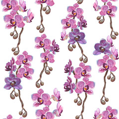 Watercolor orchid branches seamless pattern on white background