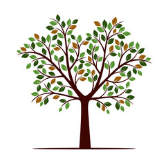 Color Tree with Leafs. Vector Illustration.