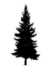 Silhouette of pine tree. Hand made.