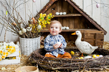 Little boy in the nest with Easter eggs