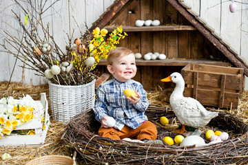 Little boy in the nest with Easter eggs and goose