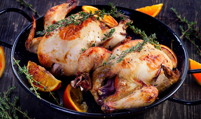 Two chicken with oranges