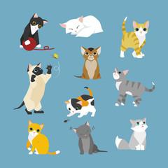kitten cat various behavior illustration set