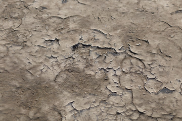 Dry cracked mud as a background