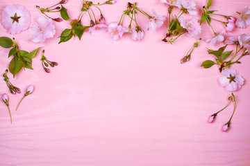 Flower frame on pink wooden background. Springtime blooming. Spring flowers. Top view with copy space. Flat lay