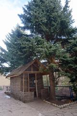 vintage braided house