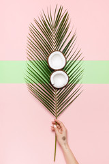 A female hand holds a leaf of a palm tree. On the palm leaf are two halves of coconut on a pastel pink background. Minimal concept