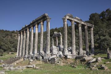 Temple of Zeus Lepsinos Euromus Turkey