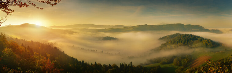 Wall Mural - Panoramic landscape of sunrise fog in Pieniny mountain