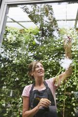 Smiling senior gardener analyzing plants seen through glass