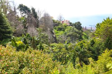 Tropischer Garten Madeira