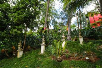 Tropischer Garten in Monte auf der Insel Madeira