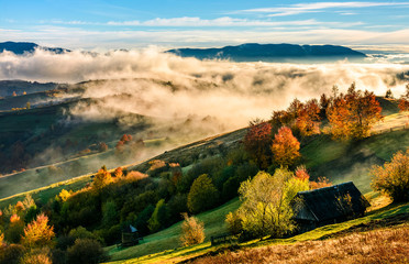 mountain rural area in foggy autumn morning