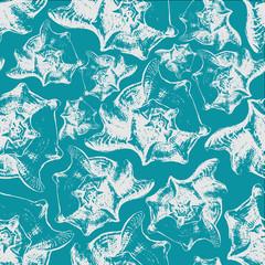 Seamless pattern background of sea shells.