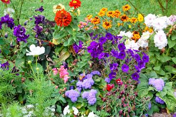 Flores en la Granja de San Idelfonso