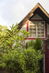 Wooden house and garden plants and trees, Tahiti, South Pacific