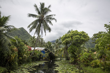 Cabin beside water in rural setting, mountains in background, Tahiti, South Pacific