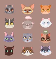 Cats vector heads illustration