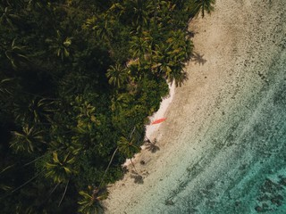 Overhead view of beach and rainforest, Tahiti