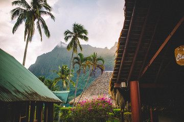 Looking through building exteriors and palm trees at mountain, Tahiti, South Pacific