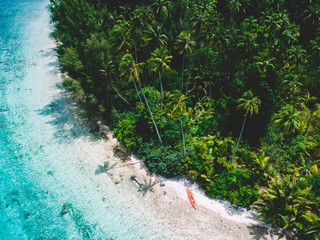 Orange colour canoe on beach by palm trees, aerial view, Mo'orea, South Pacific