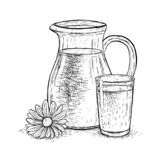 Hand drawn milk jug and glass of milk with daisy. Vector sketch
