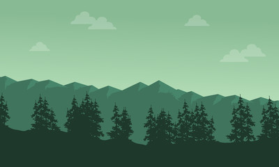 Mountain with spruce scenery silhouettes