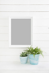 Holz Hintergrund in weiß grau hellblau türkis mit Pflanzen als Foto oder Bilderrahmen.