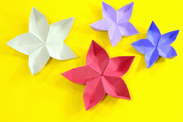 Origami cherry blossom flowers on yellow background.