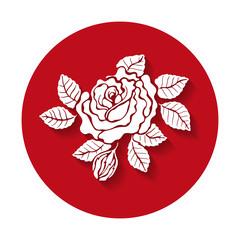 Rose vector illustration. Rose icon