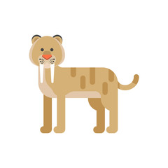 Vector flat style illustration of prehistoric animal - saber-toothed tiger.