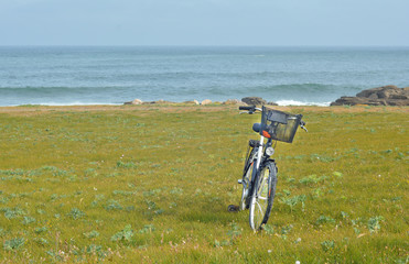 Bicycle on the background of the Ocean