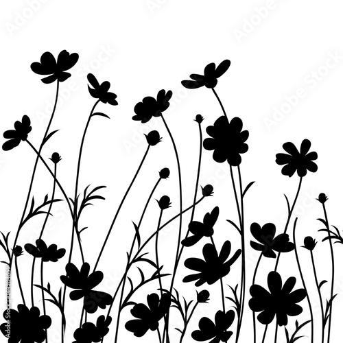 quot summer garden cosmos flower silhouette isolated on white Headless Horseman SVG Headless Horseman Drawing
