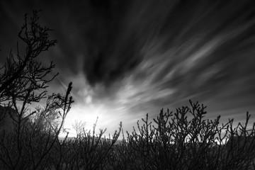 Dusk sky at winter. Kola Peninsula, Russia