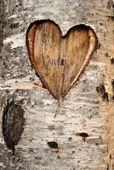 Outdoor, creativity and love concept - a heart etched on a tree.