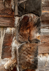 textured wooden beams insulated with a tow in the old house