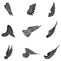 Wings vector icons set. Wing set, icon wing, feather wing bird illustration stock vector.