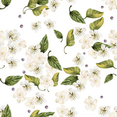 Bright watercolor seamless pattern with white flowers. Illustration