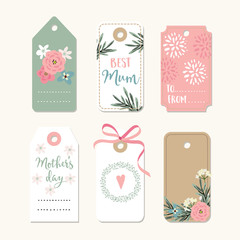 Set of romantic Mothers day, birthday or wedding vintage frames, gift tags and labels with flowers and pink ribbon. Isolated vector collection.