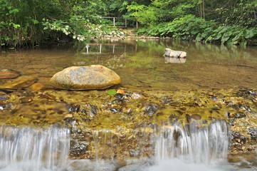 Fototapeta Beskidy wodospad