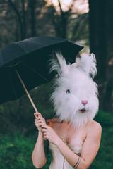 She Bunny