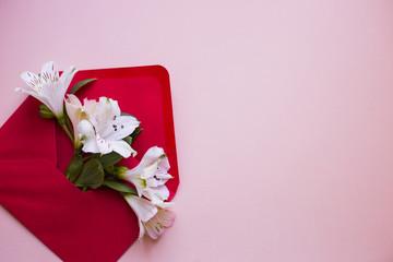 Beautiful tender bouquet of Alstroemeria in envelope on creamy rose background