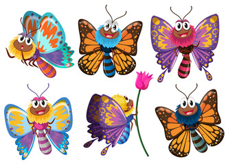 Beautiful butterflies in different actions