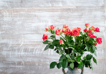 rose composition in vase with fresh flowers on wall background mock up
