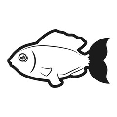 Fish sea animal symbol icon vector illustration graphic design