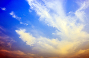 beautiful skylight sunset. Nature composition. over bright