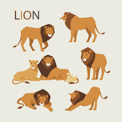 lion family various poses flat design illustration set