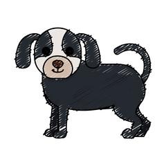 cute dog pet icon vector illustration design