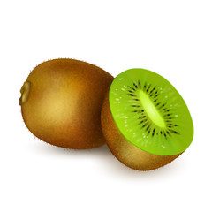 Kiwi isolated on white background. Realistic kiwi cut in half. Vector.